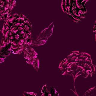 Highlow-Flower